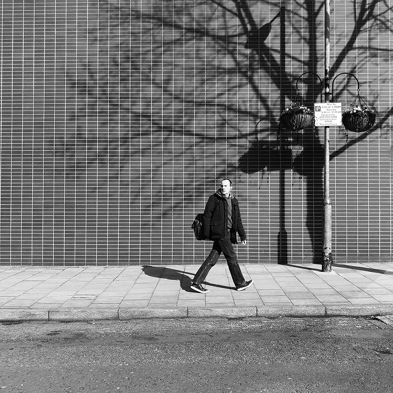 Street Photography, Tree, Photography, Print, Tree Of Life, Tree Photo, Tree Print, Urban Art, Urban Print, Urban Photo, London, England
