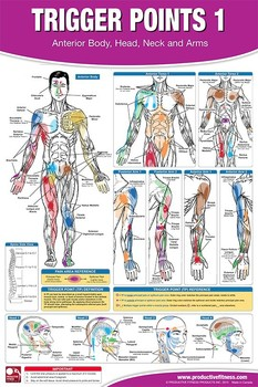 Trigger point therapy poster chart set buy trigger point therapy