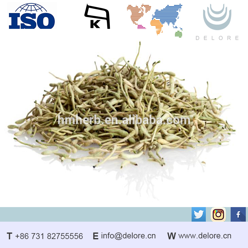Lonicera Japonica in Herbal Extract Brown Fine Powder to White Crystalline Powder factory
