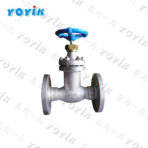 DEC Power plant generator valve 80FJ1.6P globe valve