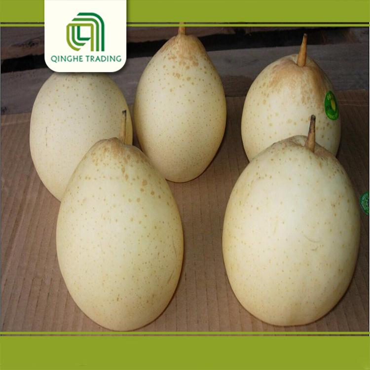 Professional excellent fresh ya pear for wholesales