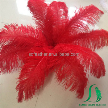 Dyed Large Red Color South Africa Ostrich Feathers For Wedding Decor