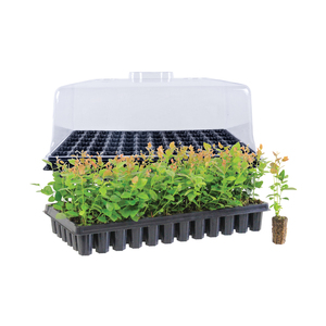 Seed Germination Station Propagation Combo Kit