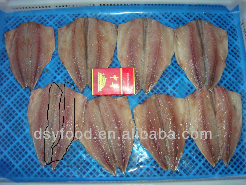 fresh frozen mackerel fish fillet with long-term good supplier