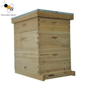 Two layers 10 frames wooden langstroth bee hive with best price