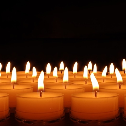 Prices Unscented Tealight Candles Or Maxi Nightlight Candle