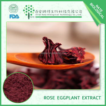 Health Products Natural Rose Eggplant Extract Powder Anthocynidins and polyphenol