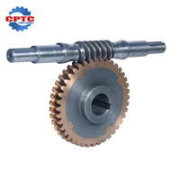 Customized CNC machining brass Worm Gear