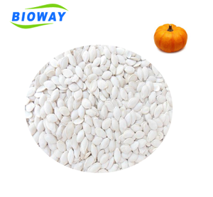 Best price Dried Raw Snow White raw pumpkin seeds