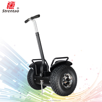19 inch big wheel balancing electric scooter black/white/red/blue yellow color customize electric chariot