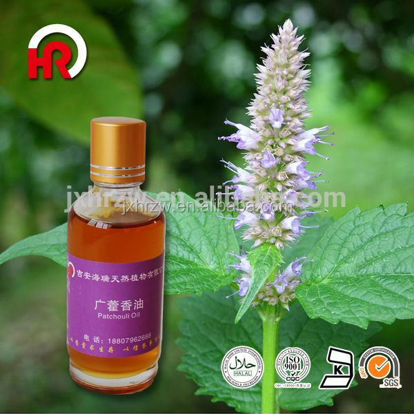 For sale Herba Pogostemonis patchouli oil