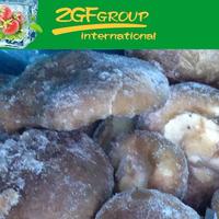frozen mushroom growing kit for sale