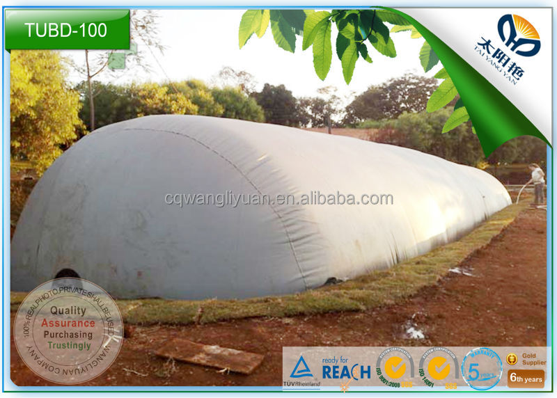 China WLY no need cement pond cheap biogas digester manufacture for farm