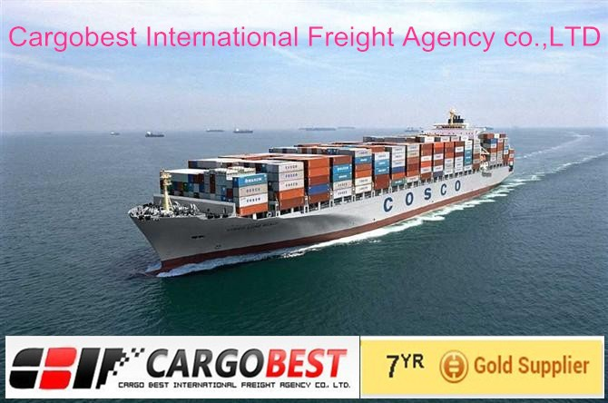 Professional shipping from Shenzhen China To Tunis/Rades
