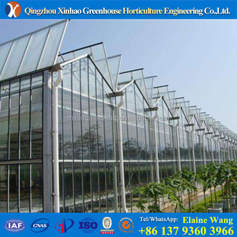 Amazing light deprivation PC sheet galvanized pipes light deprivation green house for tomatoes
