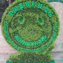 Large green topiary shaped theme park decorative artificial topiary animal smile icon boxwood topiary