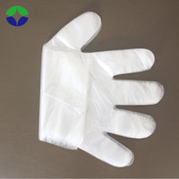 Clear transparent pe plastic disposable gloves for kids