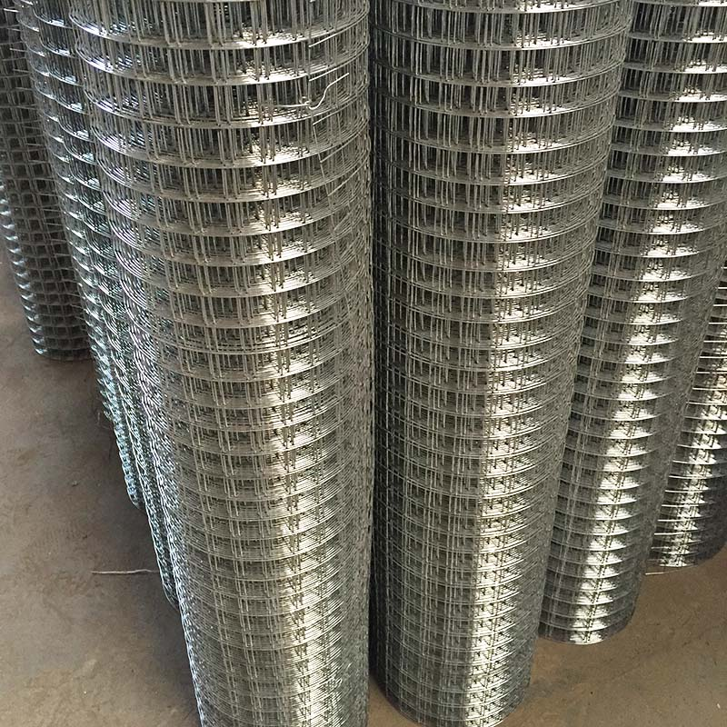 Hot Dipped Galvanized Welded Wire Mesh From Anping factory