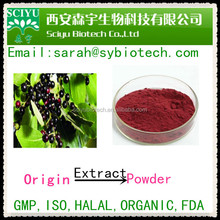 100% Natural Maqui berry Extract Powder /maqui berry powder
