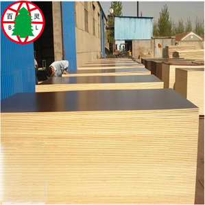 Ash Tree Veneer Board Surface Material China Ash plywood