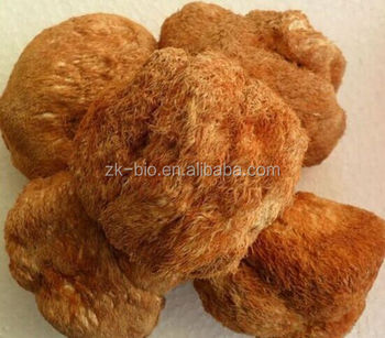 Organic Dried Lion's Mane Mushroom