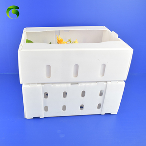 Hot sale mango packaging plastic corrugated box