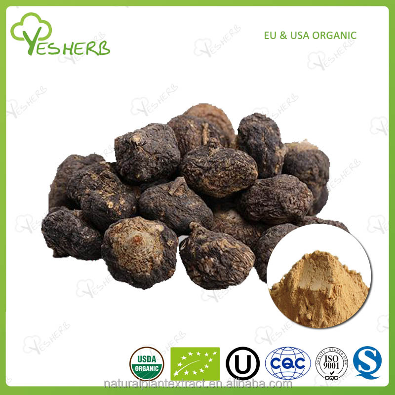 ISO certified maca 4 1 extract powder
