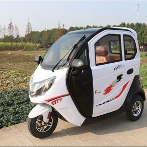 China-Adult Electric Tricycle E Trike For Sale enclosed mobility scooter for passenger
