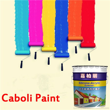Caboli China factory directly sell strong adhesive emulsion paint for exterior wall paint