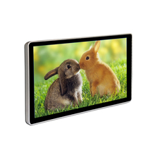 20 inch Wall Mount LCD Media Player