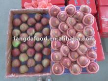 2015 Fresh Red Star Apple Hot Selling