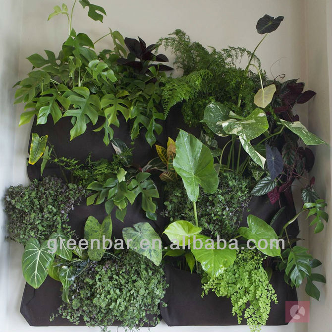 Hanging wall plant bag/Garden wall hangings