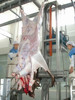 Halal complete automatic cattle abattoir equipment