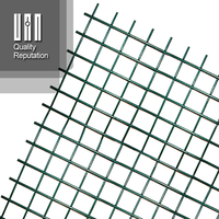 "1/4"" Galvanized Welded Iron Wire Plastic Coated Horse Fence Mesh"