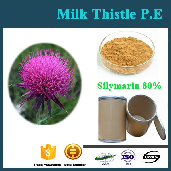High Quality Fast Delivery Silymarin Milk Thistle Extract