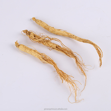 High efficacy of the natural raw ginseng can be extracted ginseng honey