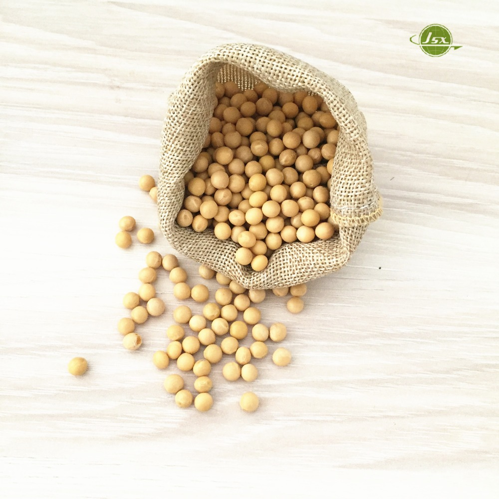 JSX common soya bean big size food grade soybeans export
