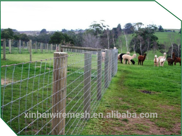 Sheep And Goat Fence Used Steel Wire Mesh Fence For Sale