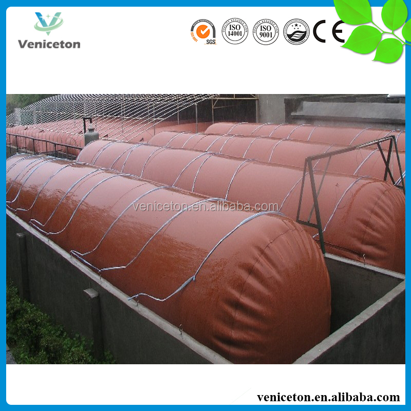 Veniceton China Veniceton High Reliable 100m3 Biogas Digester for Cow Manure/ Dung Treatment
