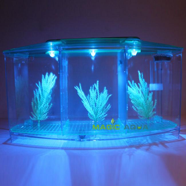 three splits mini led light betta fighting fish tank