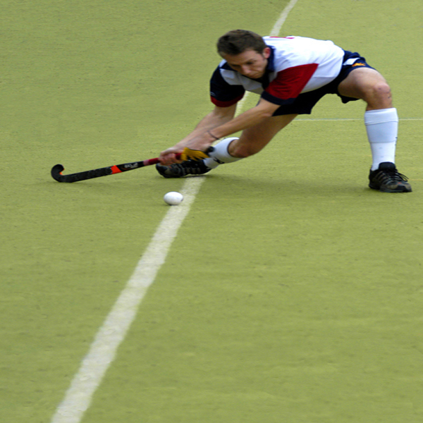 Professional Hockey Sports Artificial Grass Prices