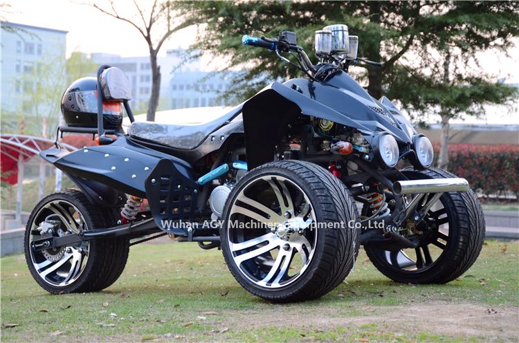 AGY Factory Hot Sales 250cc reverse trike
