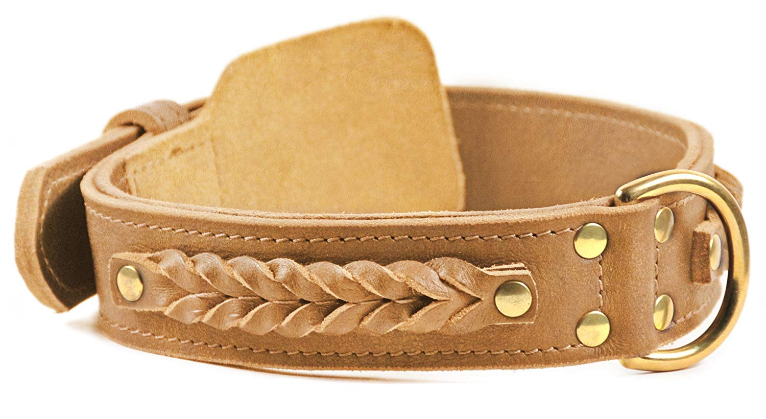 "Dean and Tyler ""BRAIDED HEAVEN"", Leather Dog Collar with Solid Brass Hardware - Tan - Size 32-Inch by 1-3/4-Inch - Fits Neck 30-Inch to 34-Inch"