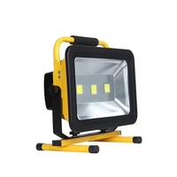 Factory direct rechargeable led flood light 10w