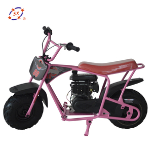 Cool Racing Mini Motorcycle 80CC 4 Stroke Pocket Bike