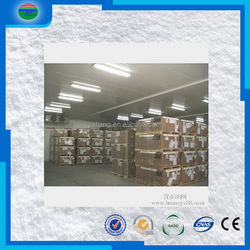 Newly best quality cold room pu insulation wall panel