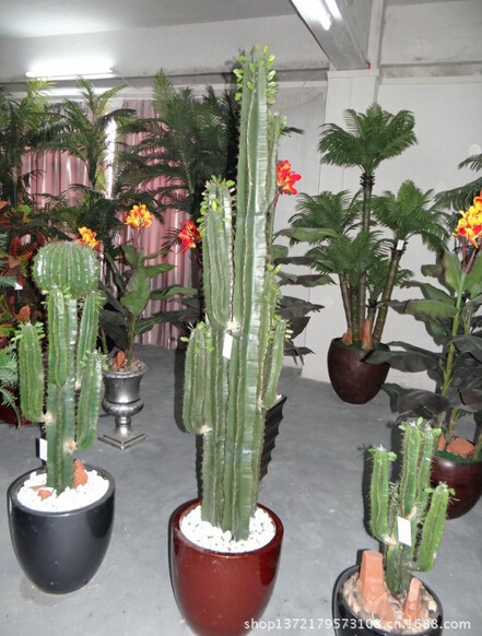 Export Large Plastic Fake Plants Of Artificial Cactus For