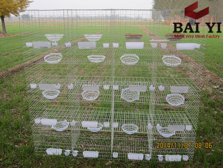 Poultry Quail Layer Cages For Quail Birds Farming Cage For Quail Hens