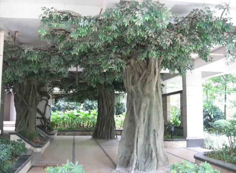 Faux ficus arbre grand ext rieur bonsa s artificielle for Ficus benjamina exterieur