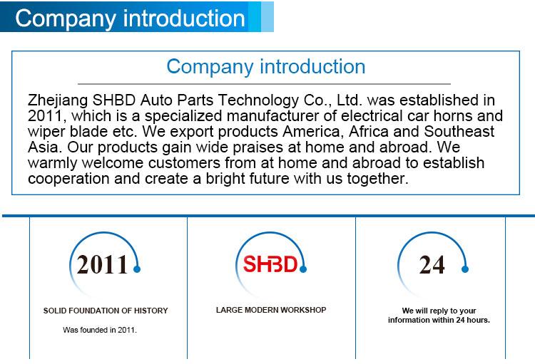 Heißes lautestes Universalauto 12V 24V des elektrischen Autos des Verkaufs